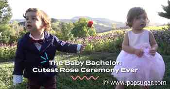 The Baby Bachelor — Cutest Reality TV Tribute Ever? - POPSUGAR