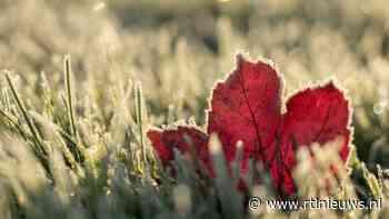 Om deze redenen kun je met vorst maar beter niet over het gras lopen - RTL Nieuws