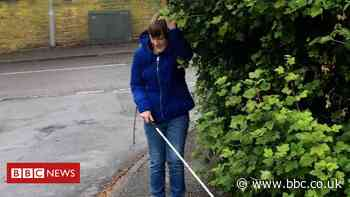 Blind campaigner asks people to remove overhanging trees