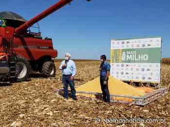 Aprosoja participa da Abertura Nacional da Colheita do Milho em Nova Mutum - O Bom da Notícia
