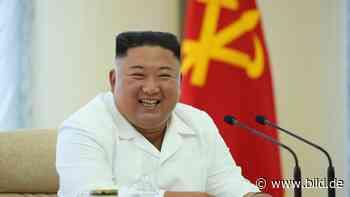 Propaganda-Gegenschlag: Kim will Flugblätter über Südkorea abwerfen - BILD