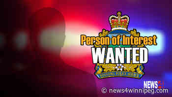 Police looking to identify a person of interest in Selkirk Avenue assault - News 4