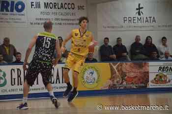L'ex Sutor Montegranaro Michele Tremolada nel mirino della NP Olginate - Serie B - Basketmarche.it