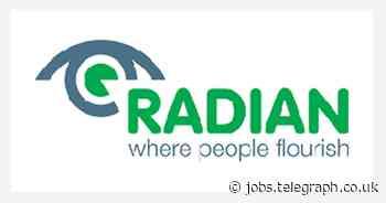 Radian: PowerBI Developer