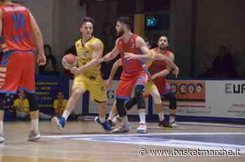 Sutor Montegranaro, obiettivo ripartire con la conferma di coach Ciarpella e di tre giocatori - Serie B - Basketmarche.it