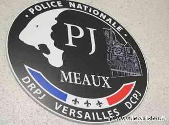 Villeparisis : une famille agressée à domicile par des faux policiers - Le Parisien