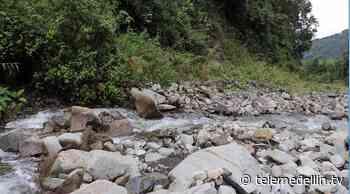 Dapard realiza mantenimiento a la quebrada Liborina - Telemedellín