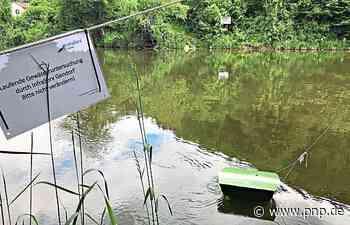 Grüne Behälter untersuchen Wasserqualität - Trostberg - Passauer Neue Presse
