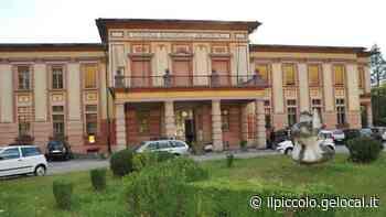 """A Gorizia è """"Sconfinatamente"""": pittura, musica, sanità e poesia - Il Piccolo"""