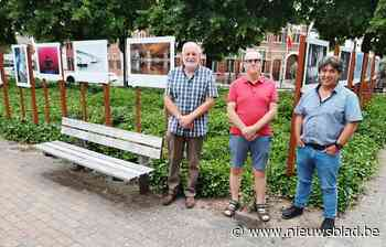 Fotoclub Focus toont 42 werken rond de kiosk op het marktplein - Het Nieuwsblad