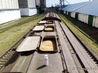 Russia's Ulyanovsk region eyes exporting grain to Kazakhstan - Trend News Agency