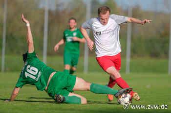 Viele Wechsel bei den Rems-Murr-Fußballteams: TSV Schwaikheim verliert Toptorjäger - Rems-Murr-Sport - Zeitungsverlag Waiblingen
