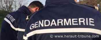 PEZENAS - Interpellation et comparution pour un vol à main armée dans une bijouterie - Hérault-Tribune
