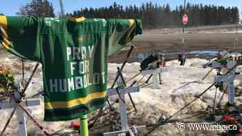 Man who ran Humboldt Broncos fundraising scam also defrauded B.C. family of $65K