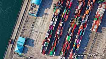 Zo maakt HelloContainer het boeken van een zeecontainer net zo makkelijk als een vliegticket - Sprout