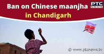 Chandigarh Ban on Chinese Maanjha or Pakka Dori for Kite Flying - PTC News