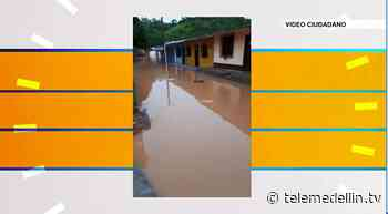 Fuertes lluvias dejó a más de 250 familias afectadas en Vegachí - Telemedellín