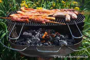 Politie legt barbecue met 80 gasten stil: 7 mensen opgepakt