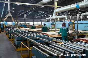 "Segezha Group""s Vyatka plywood mill improves production quality - Lesprom Network"