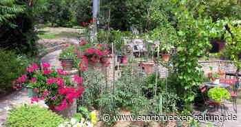 Atelier Andruet Saarwellingen öffnet das Gartentür - Saarbrücker Zeitung