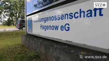 Genossenschaft aus Hagenow: Konsum kommt stabil durch Corona-Zeit   svz.de - svz.de