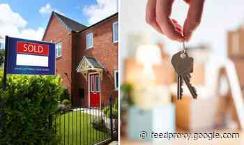 House prices predicted to rise over the next three months as market 'accelerates'