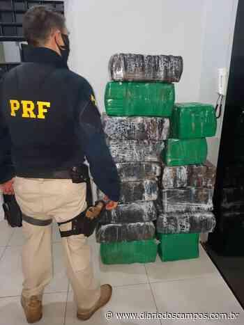 Diário dos Campos | PRF apreende 270 kg de maconha em Irati durante a madrugada - Diário dos Campos