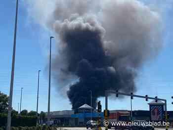 Grote brand op bedrijventerrein in Wijnegem: rookpluim van ver te zien
