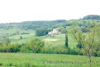 Drôme : A Miribel, les 12 000 poules de la discorde - France 3 Régions