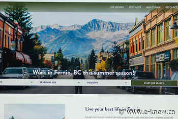 Chamber launches new workforce attraction website | Elk Valley, Elkford, Fernie, Sparwood - E-Know.ca