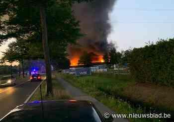 Zware bedrijfsbrand bij Gebo in Dessel