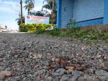 Vítima de tentativa de homicídio em Guaramirim, morador de rua se recupera no hospital - OCP News