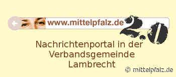 Waldspielplatz in Lindenberg bis auf Weiteres gesperrt. - Mittelpfalz