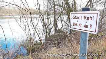 Kehl: Chlorwasser fließt 40 Jahre lang in Prestelsee - Kehl - Schwarzwälder Bote