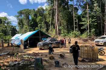 Força Estadual fecha dois garimpos clandestinos em Itaituba - Para