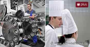 Laut Berufsberatung noch 175 junge Leute im Kreis Lindau ohne Ausbildungsplatz - Schwäbische