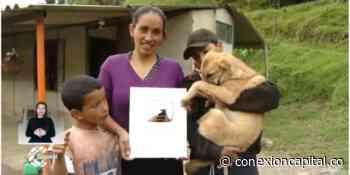 Llegó la energía a casa de familia YouTuber en Chipaque - Canal Capital