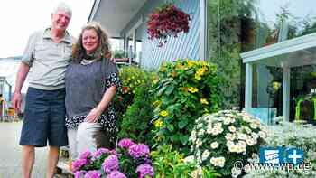 Blumen Droste in Bestwig beendet buntes Kapitel an der B7 - WP News