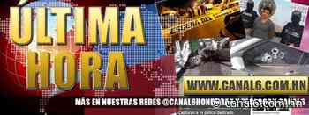 Matan a dirigente del transporte y su acompañante en Ceiba, Atlántida - canal6.com.hn
