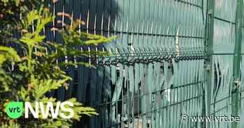 """Sint-Martens-Latem wil plastieken tuinafsluitingen weg: """"Liever klimop of struiken dan plastiek"""" - VRT NWS"""
