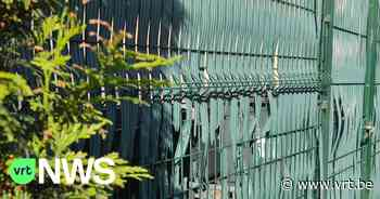 "Sint-Martens-Latem wil plastic tuinafsluitingen weg: ""Liever klimop of struiken dan plastic"" - VRT NWS"