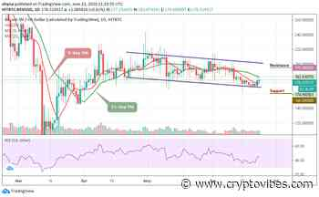 Bitcoin SV Price Analysis: BSV/USD Takes the Intraday Price up by 0.61% - CryptoVibes