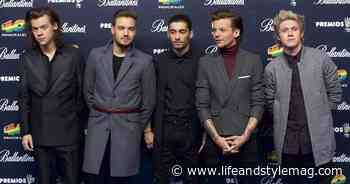 One Direction 10-Year Anniversary: Details on Their Hiatus and Reunion - Life&Style Weekly