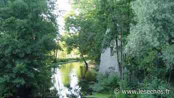 Dans le Val de Marne, la renaturation des berges de l'Yerres est lancée - Les Échos