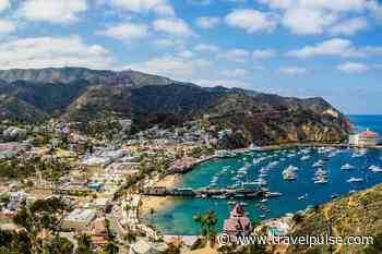 Catalina Island Could Provide the Ideal Post-COVID-19 Vacation - TravelPulse