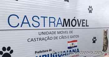 Uruguaiana contará com Castramóvel a partir de julho - Jornal Correio do Povo