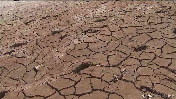 Drought Plan Enacted For 40 Colorado Counties By Gov. Jared Polis