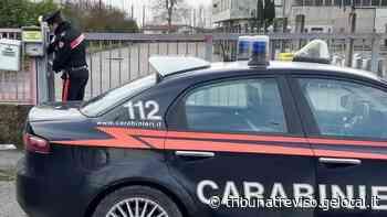 Spresiano, preso a martellate dal collega: anche l'azienda condannata a risarcirlo - La Tribuna di Treviso