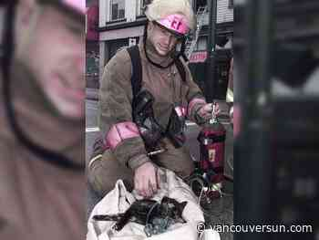 Vancouver firefighter Steve Letourneau dies from work-related cancer