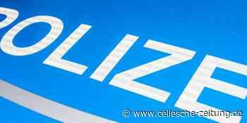 Diebe geben Auto in Soltau zurück: Kuriose Polizeimeldung aus Heidekreis - Cellesche Zeitung